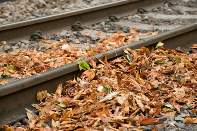 Leaves lying on a railway track in autumn in England.