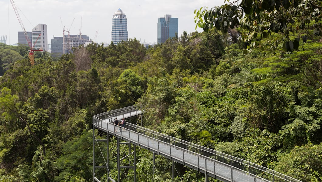Southern Ridges Canopy Walk, Singapore