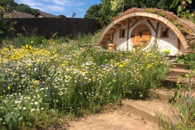 The hobbit house