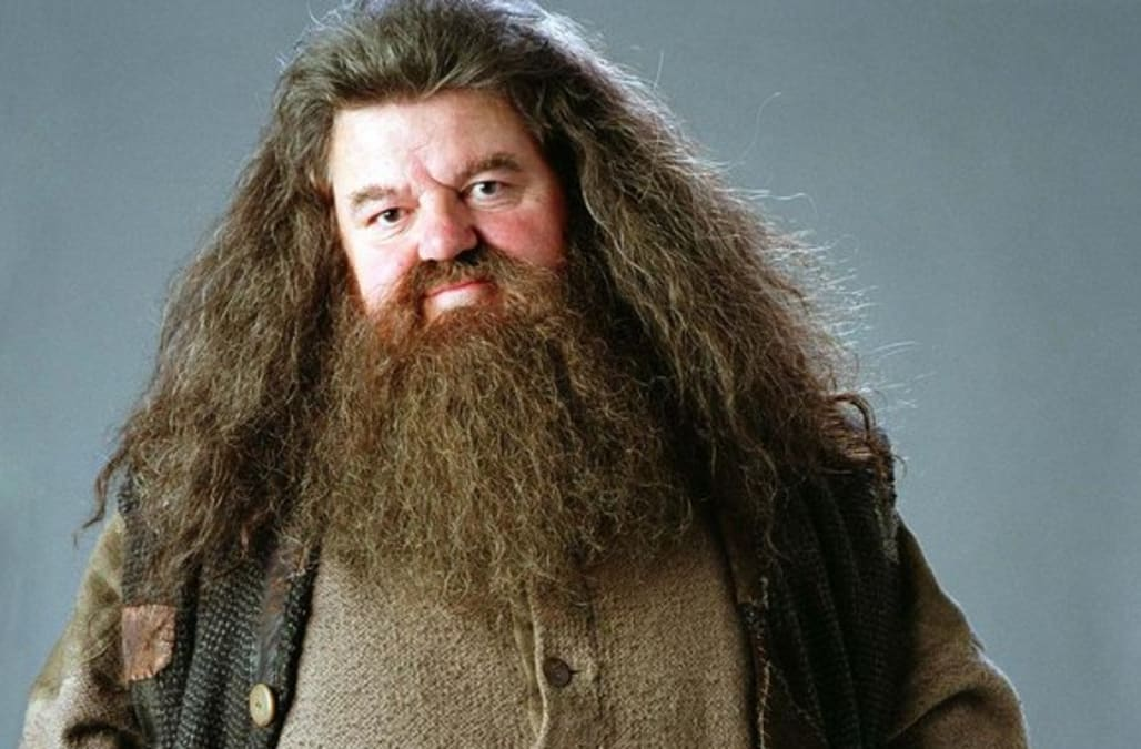 Remember rubeus hagrid from 39 harry potter 39 see what actor What house was hagrid in