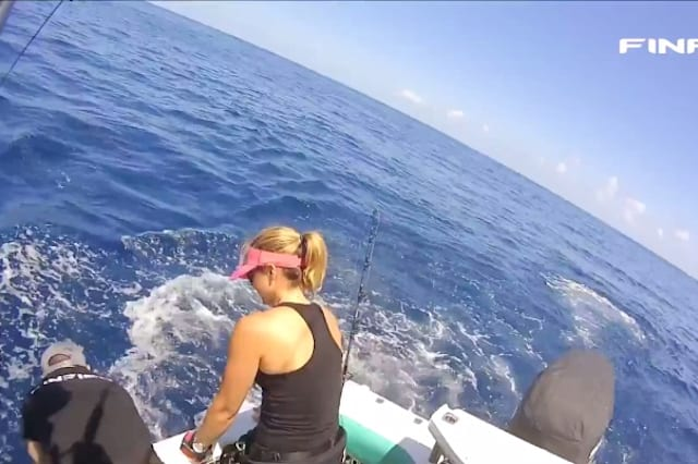Fisherman struggles with marlin
