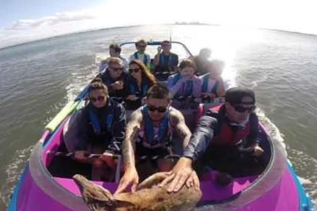 Boat rescues drowning wallaby