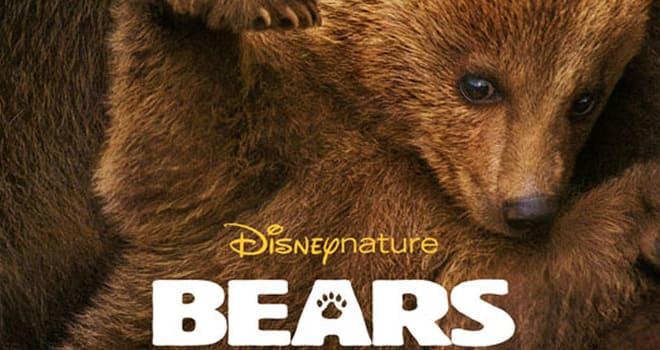 'Bears' Poster