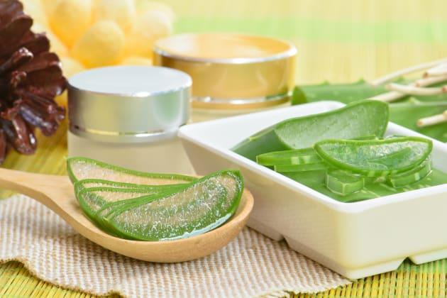 5 Reasons To Get An Aloe Vera