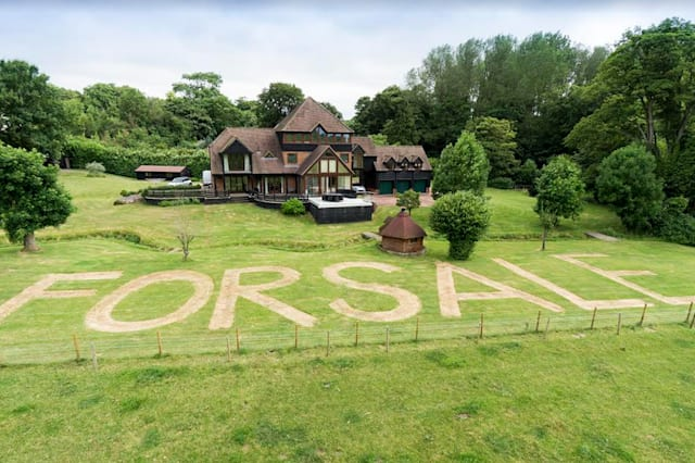 The 'for sale' sign mowed into the lawn.