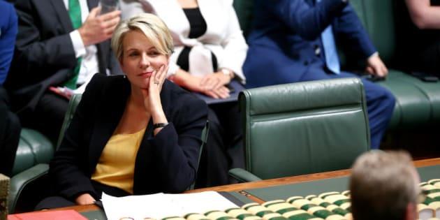 "Ms Plibersek says Cory Bernardi is ""calling the shots"" on marriage"