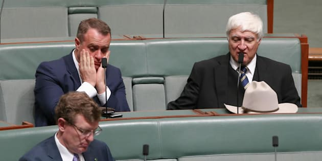 Liberal MP Tim Wilson and Independent MP Bob Katter during a division on the Plebiscite