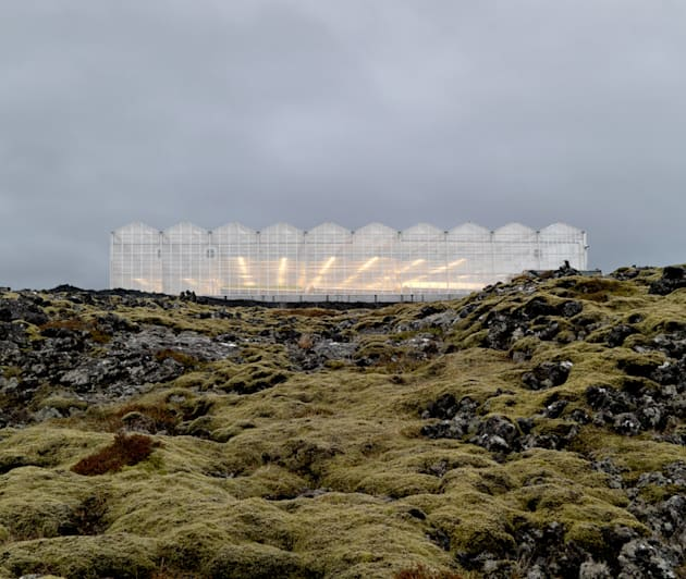 The greenhouse in Iceland is ecologically-engineered. It creates no carbon emissions and uses natural...
