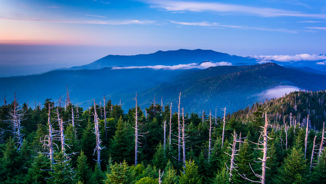 view of fog in the smokies from ...