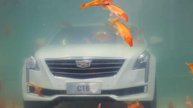No, Cadillac is not killing its flagship CT6 sedan