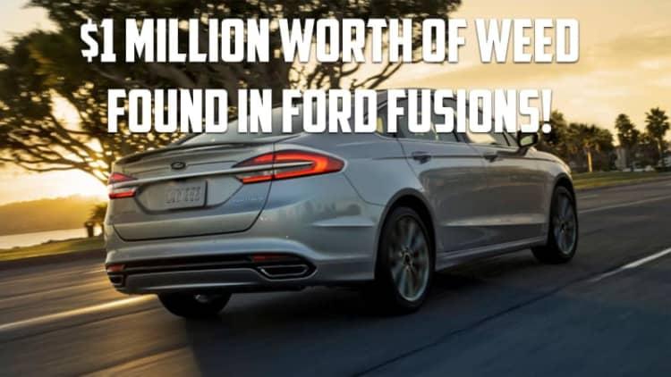 $1 million worth of marijuana found in Ford Fusions | Autoblog Minute