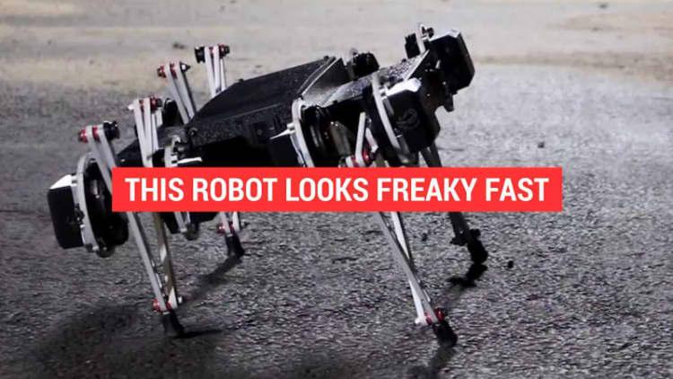 This kind of creepy Ghost Minitaur robot looks freaky fast