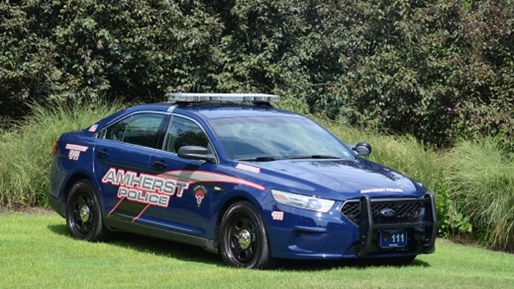 Police Cars For Sale In Michigan Online
