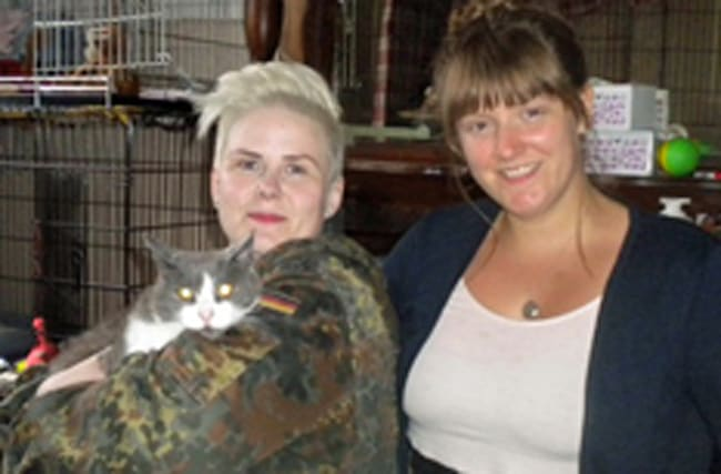 Cat reunited with owner 18 months after crossing Irish sea on ferry