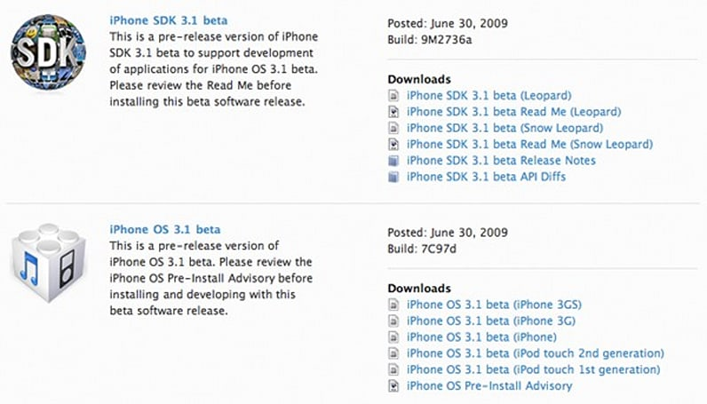 iPhone OS 3.1 beta now available for developer community