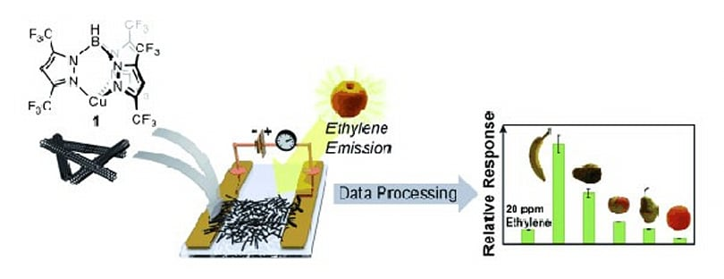 Nanotubes sniff out rotting fruit, your dorm room might be next