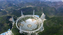 An otherworldly visitor nests in rural China