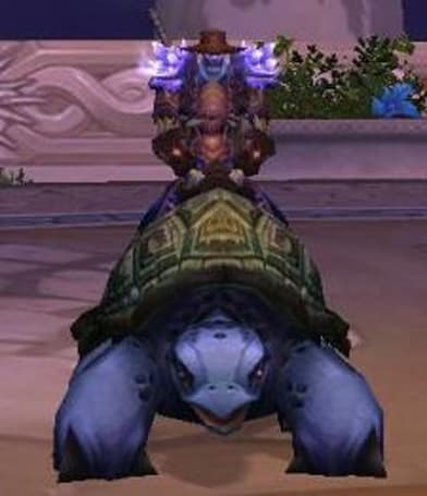 How to get the Turtle mount
