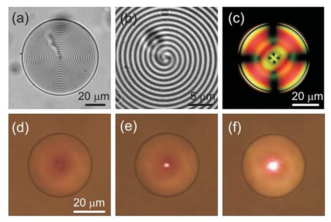 World's first 3D microlaser created, has a gooey Bragg-onion center