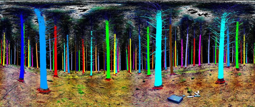 The environmentally friendly rainbow laser forest