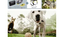 Sony's dog harness action cam mount coming to Japan, countless YouTube clips to follow