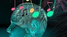 Study shows love for music relates to brain chemical, not to My Chemical Romance