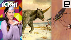 ICYMI: Sad unicorn truth, disease-fighting drones and more