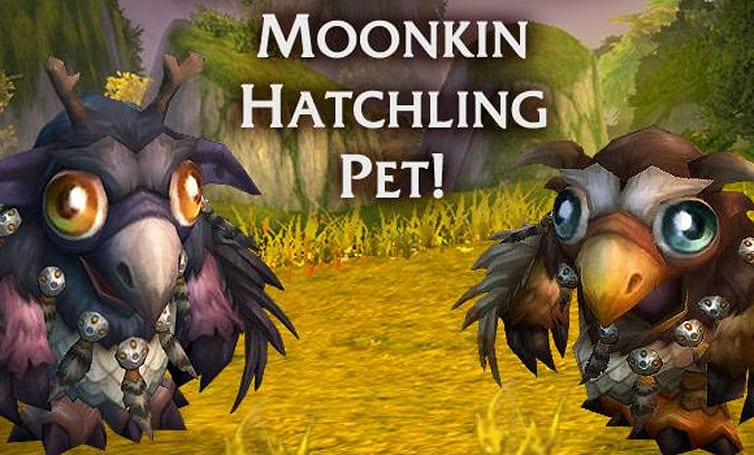 Moonkin hatchling 50% off this week only