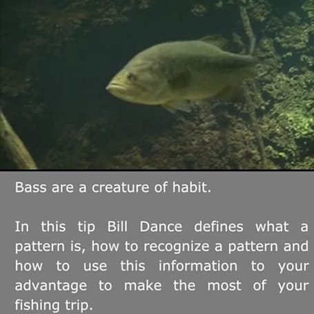 Tips and techniques from master bass angler Bill Dance
