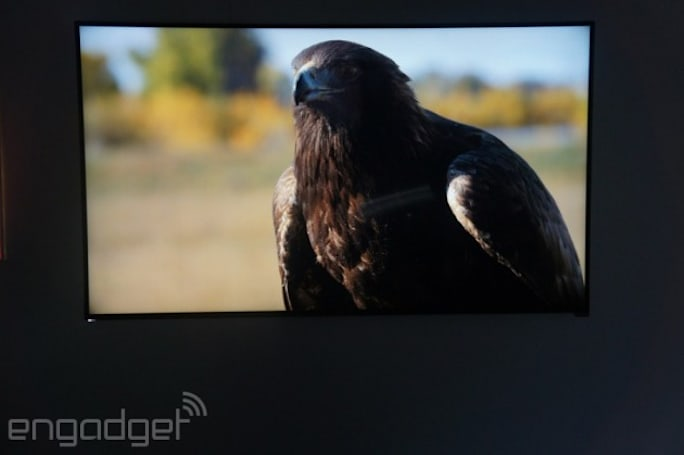 Vizio's 4K Ultra HD TVs start at $1,000 for a 50-inch set (video)