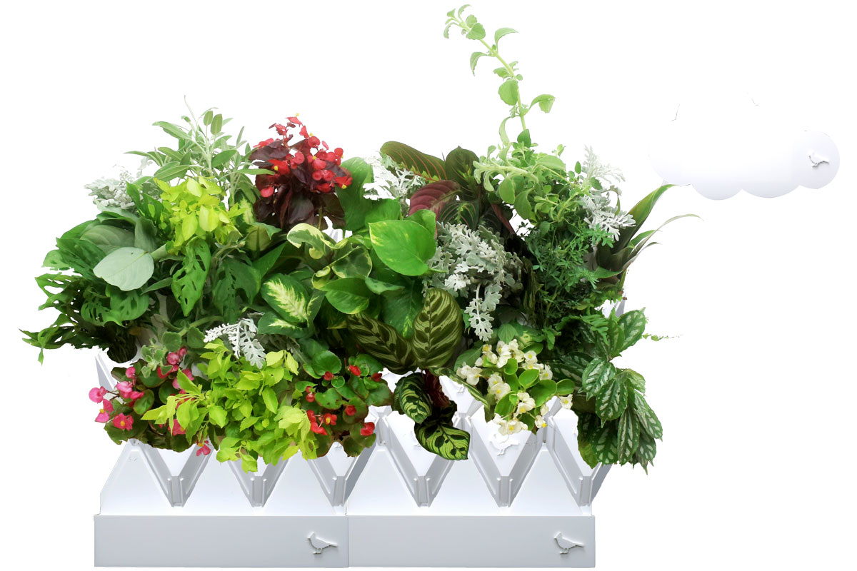 sensor equipped plant pods take the guesswork out of indoor gardening. Black Bedroom Furniture Sets. Home Design Ideas