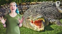 ICYMI: Reptile robots in the wild