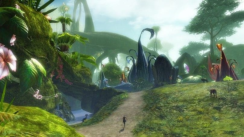 Guild Wars 2 beta will include new PvP map, live gem store, and more