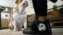 Elektroschrott des Tages: E-Sneakers mit App-gesteuertem Display