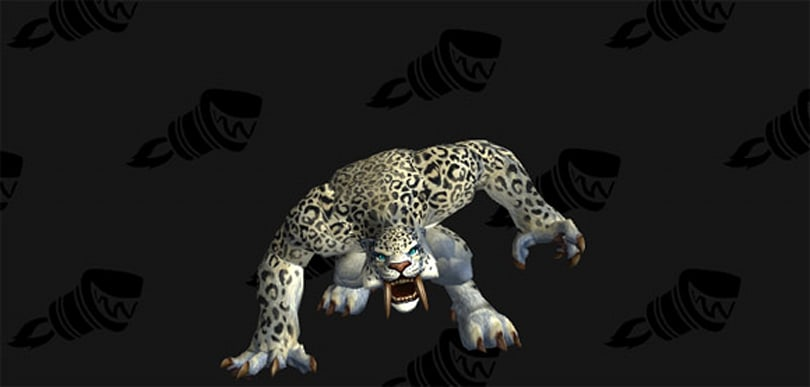 Warlords of Draenor: Claws of Shirvallah cat form datamined