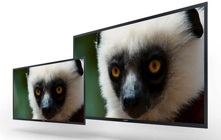 Sony unveils 30-and 56-inch professional 4K OLED monitor prototypes