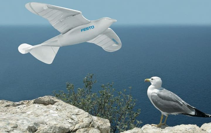 Festo's SmartBird robot takes off with elegance, doesn't poop on you (video)
