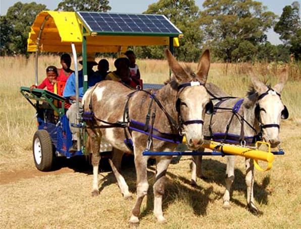 Solar-powered donkey carts bring power to African villages