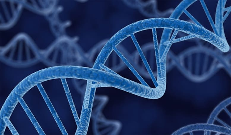 Supreme Court rules that naturally occurring DNA cannot be patented