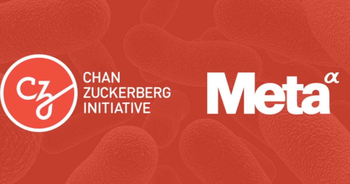 Chan Zuckerberg Initiative acquires Meta's scientific search engine
