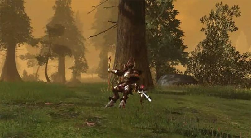 Aventurine reaches out to Darkfall community with tournament video
