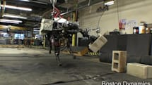 BigDog four-legged robot adds an arm, throws for the scouts (video)