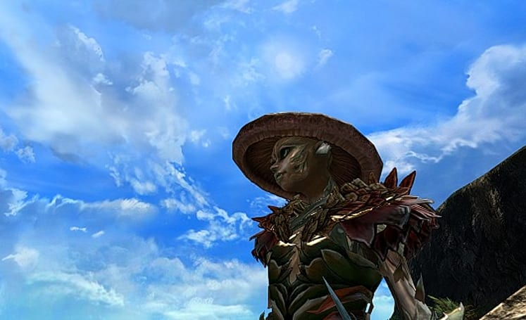 Flameseeker Chronicles: I'd like to build a Guild Wars 2 home
