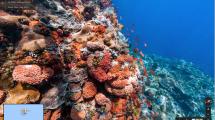 Die Insel Komodo und ihre Drachen sind auf Street View