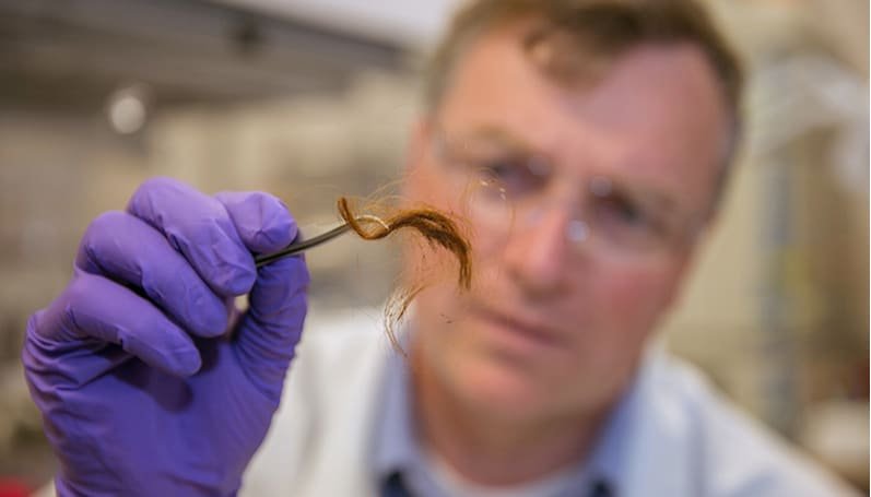 Police could soon identify you by your hair proteins
