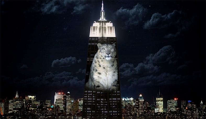 Empire State Building projection shines a light on endangered animals