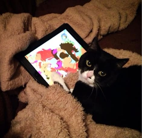 YouTube Find: Animals go insane over the iPad