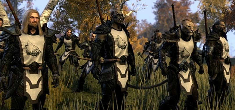Guild leaders converge for The Elder Scrolls Online's first guild summit