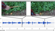 Machines can generate sound effects that fool humans