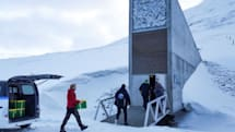 Arctic seed vault grows as defense against food crisis